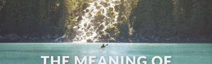 Composing for Nature Doc 'The Meaning of Wild'