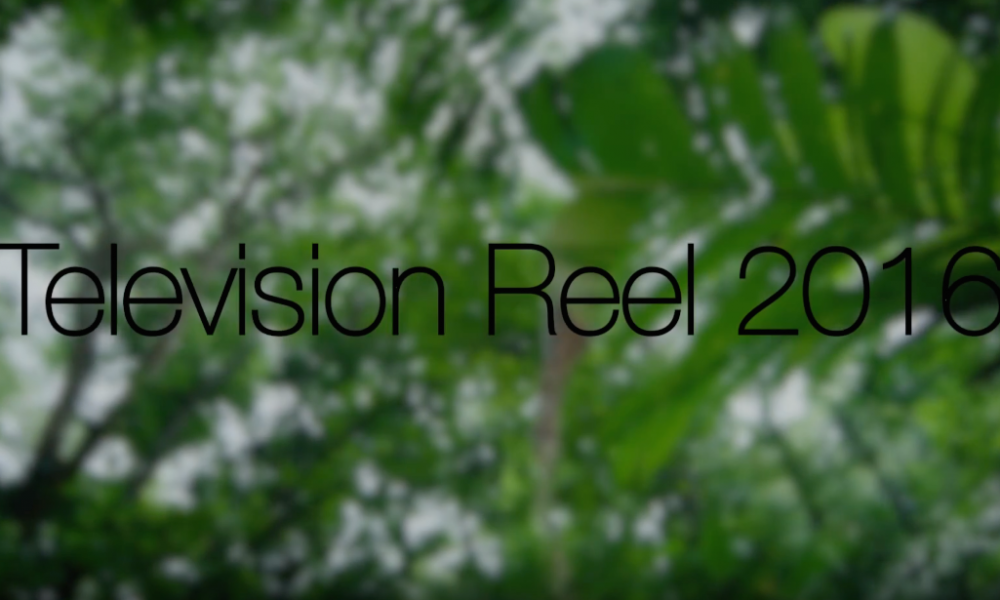 Television reel 2016